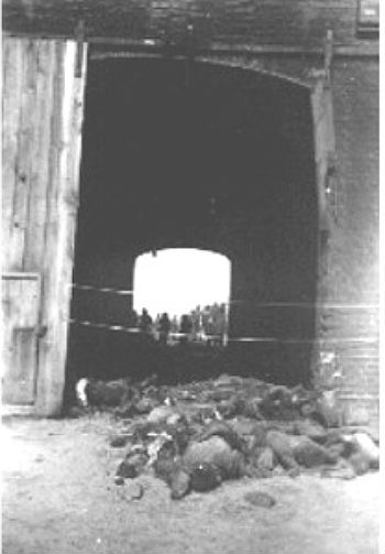View Showing Some Of The Charred Remains 1016 Human Beings Mostly Polish And Russian Slave Laborers Who Had Been Burned Alive In A Large Barn