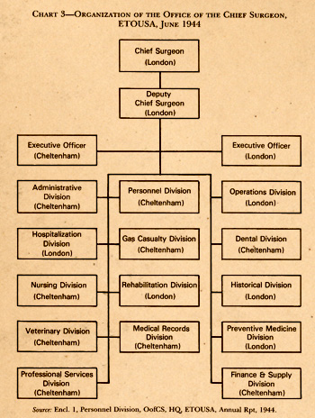 Chart illustrating the early June 1944 organization of the Office of the Chief Surgeon, ETOUSA in the United Kingdom.