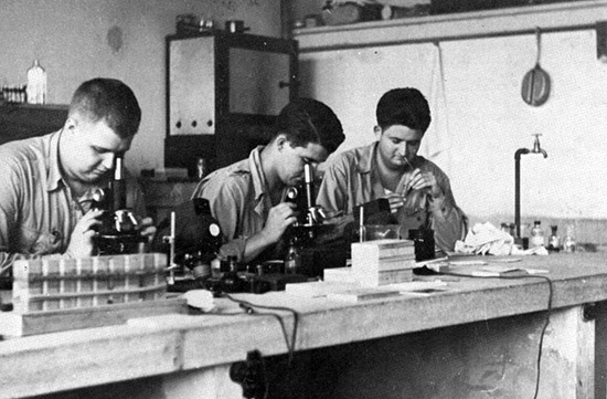 Three Technicians examine patients' blood samples in the Laboratory of the 45th General Hospital.