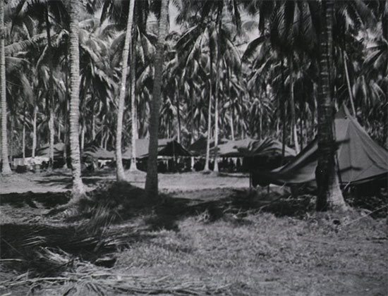 General view of the 54th Evacuation Hospital. Photograph taken during the unit's time in Papua New Guinea.