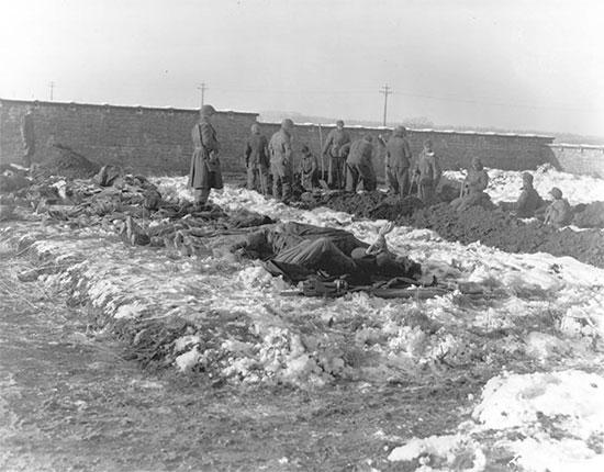 December 1944, Bastogne Perimeter, Belgium. German Prisoners of war dig graves to bury American dead.